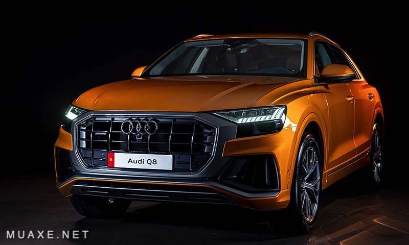Gia-xe-Audi-Q8-2021-TFSI-55-quattro-MUAXE-NET